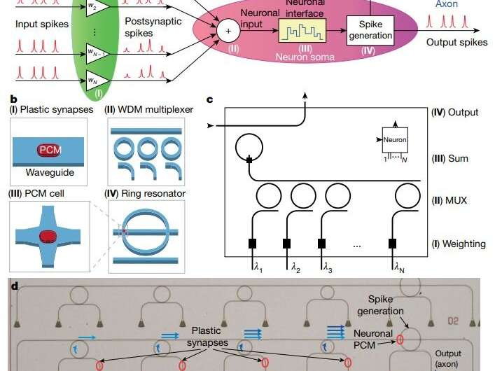 An all-optical neural network on a single chip