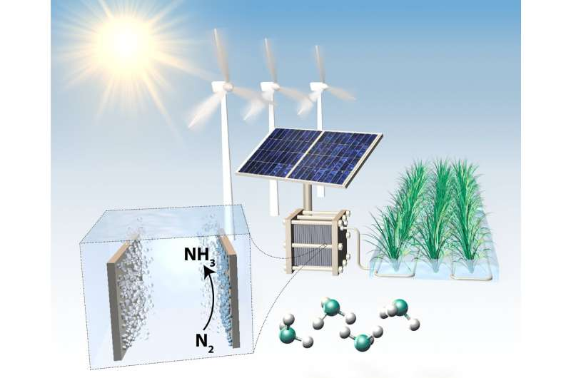 Need for rigorous procedures within electrochemical production of ammonia