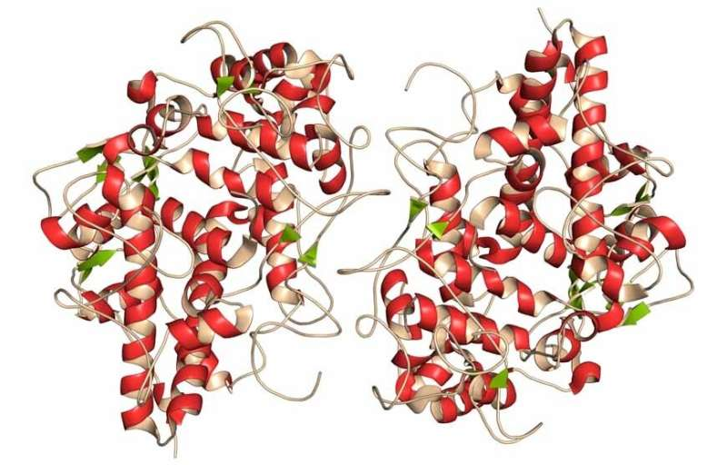 Antimicrobial protein implicated in Parkinson's disease