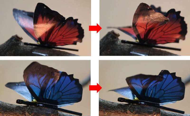 Artificial Muscles Bloom, Dance, and Wave