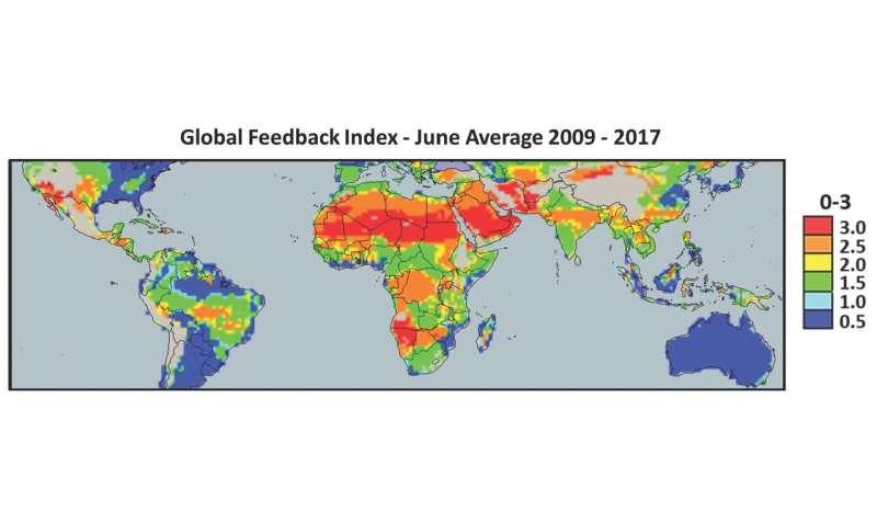 Desert plantations found to enhance rainfall