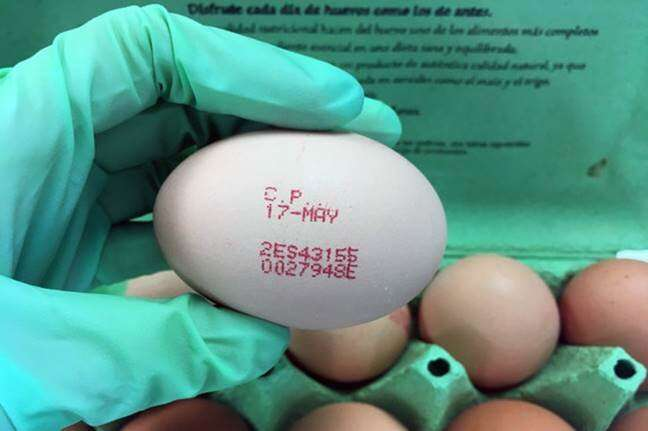 First method to differentiate the four egg types