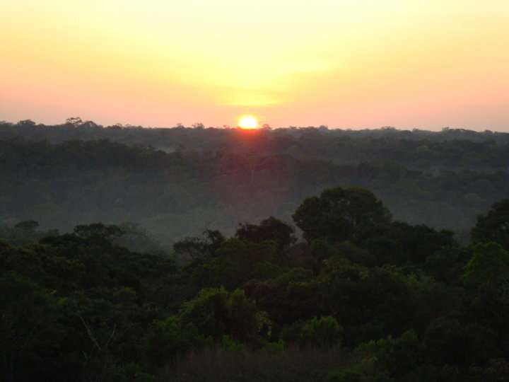Evolutionary diversity is associated with Amazon forest productivity