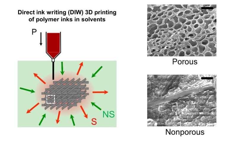 SUTD researchers developed a unique method of fabricating 3D porous structures