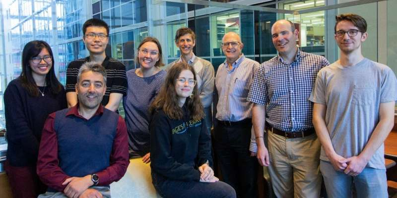 Researchers creating AI-powered chatbot to help families living with neurodevelopmental disabilities