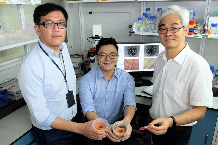 Scientists find easier way to harvest healing factors from adult stem cells in the lab