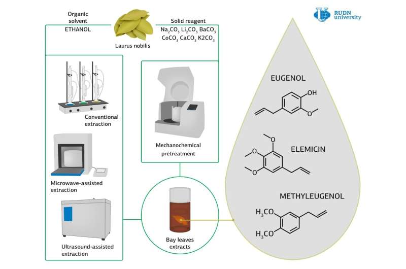 RUDN chemists improved the method of extracting natural antioxidants from bay leaves