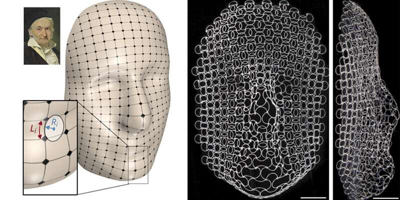 Shape-shifting structures take the form of a face, antenna