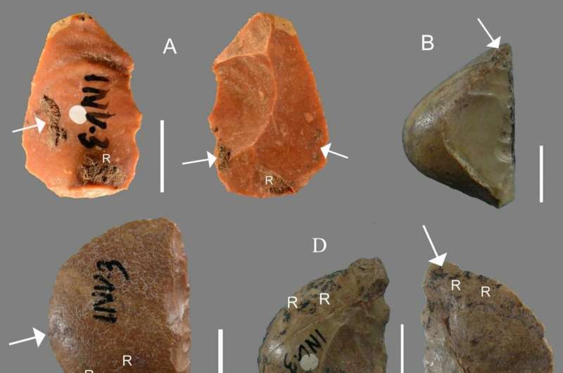 Neanderthals used resin 'glue' to craft their stone tools
