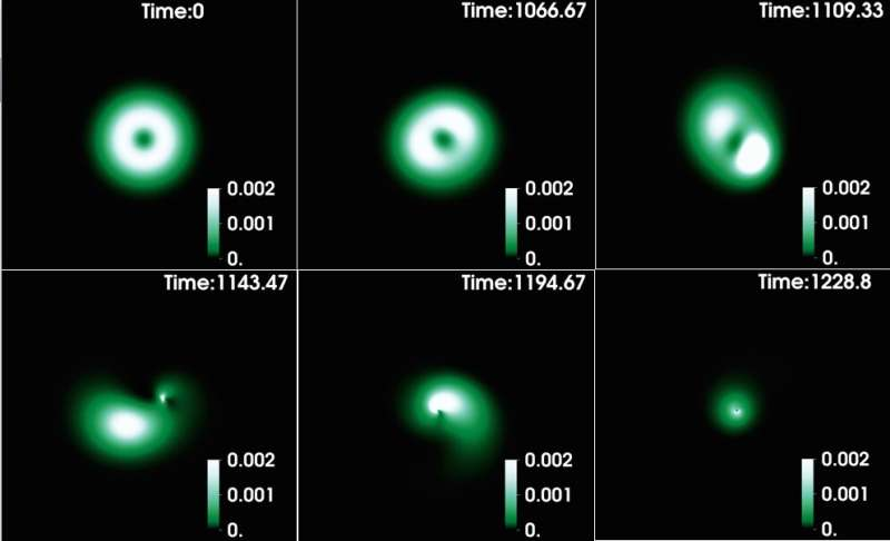 Study unveils new nonlinear dynamics of spinning bosonic stars