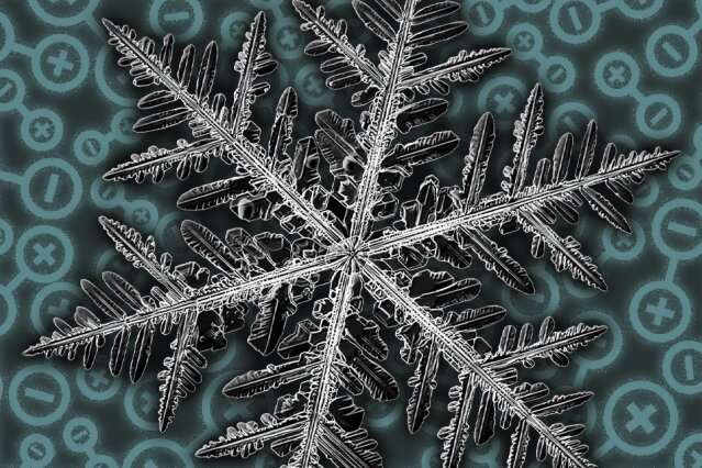 Scientists discover fractal patterns in a quantum material