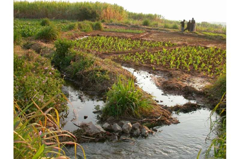 A 2 km freshwater journey to food security