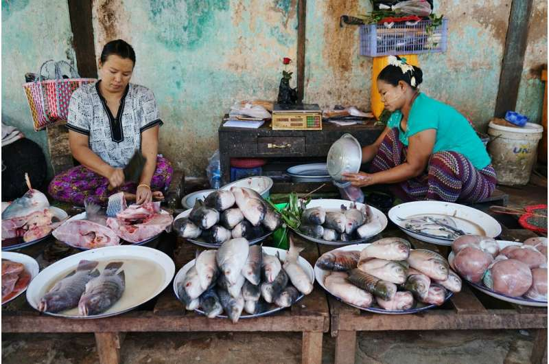 Achieving Paris climate target could net additional billions in fisheries revenue