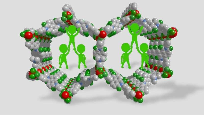 Adding a polymer stabilizes collapsing metal-organic frameworks