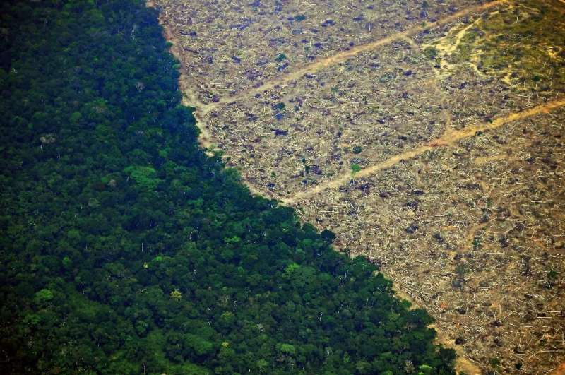 A deforested tract of land near an area affected by fire in the Amazon rainforest is pictured near Porto Velho in northern Brazi