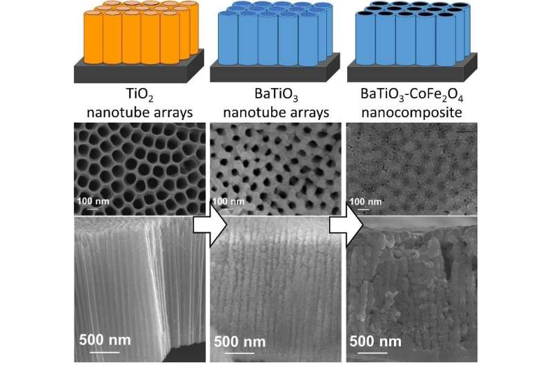Affordable multiferroic material