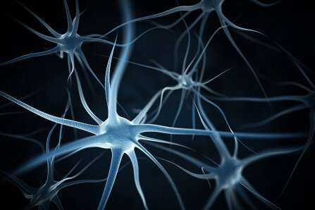 A human-specific gene protects neurons against amyloid beta protein