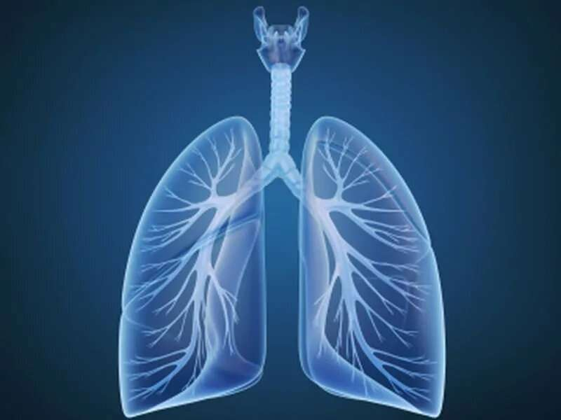 AI model uses serial imaging to predict lung cancer tx response