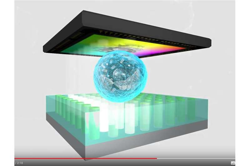 A multimodal novel lensless microscopy technology for medical applications