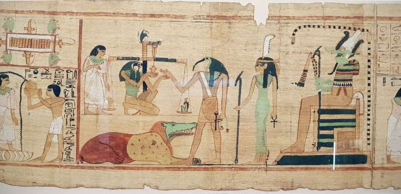 Ancient Egyptians gathered birds from the wild for sacrifice and mummification
