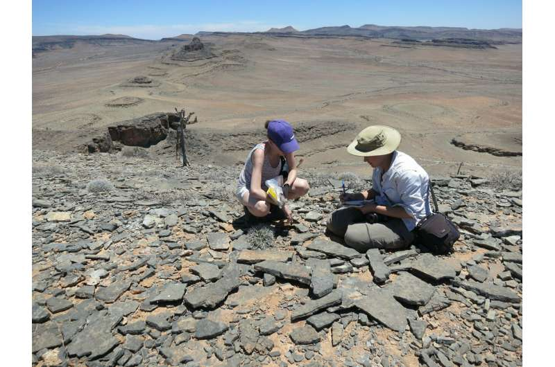 Ancient records prompt rethink of animal evolution timeline