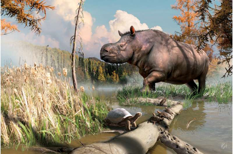 Ancient rhinos roamed the Yukon