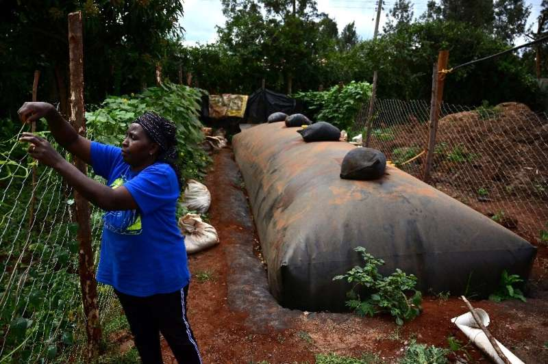 Anne Mburu uses a flexibag to generate biogas. She used to spend around $20 a month in buying firewood - now methane provides he