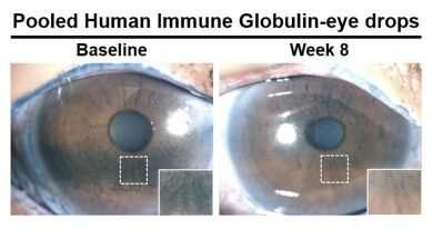 Antibody-based eye drops show promise for treating dry eye disease