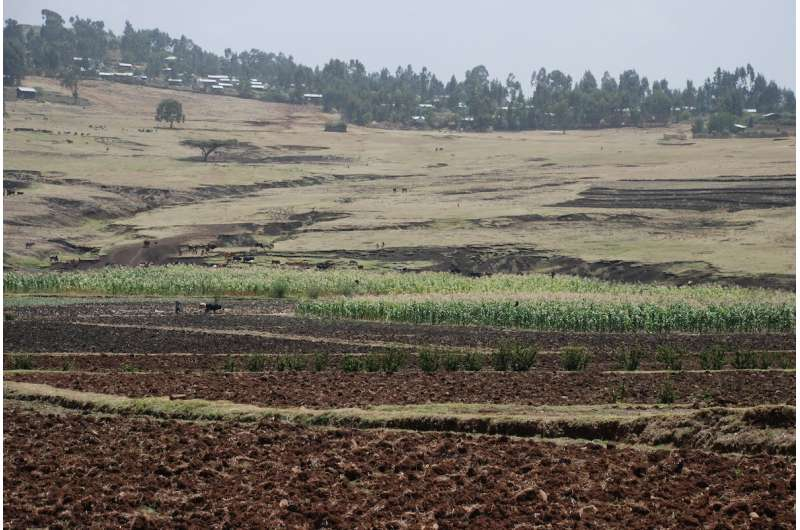 As climate heats up, rising rainfall averages hide crop-killing droughts