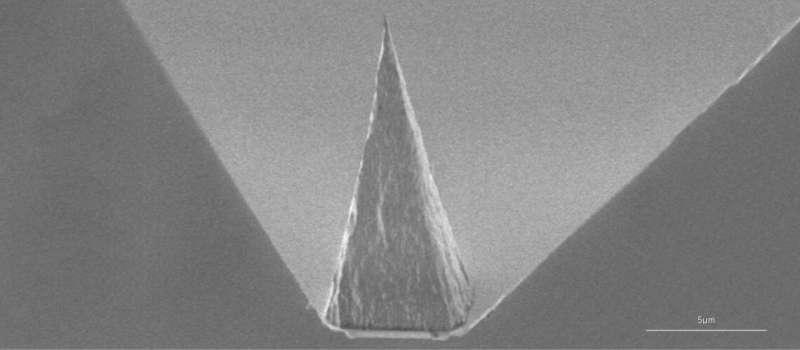 A tip for future nanoscale sensing