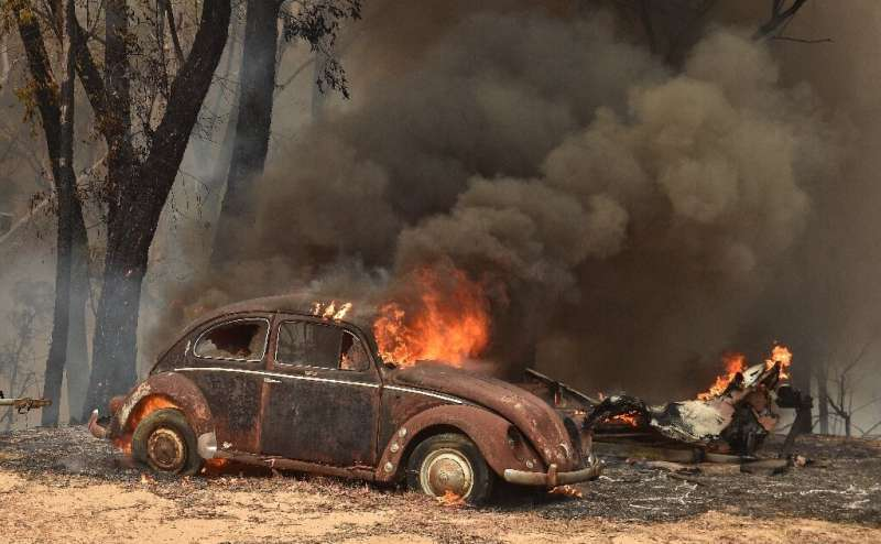 At least three million hectares (7.4 million acres) of land has been torched across Australia in recent months