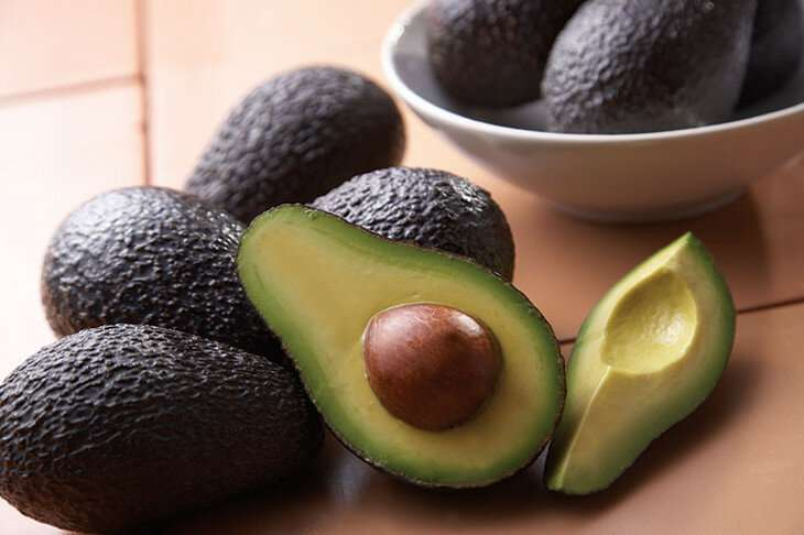 Avocado seed extract shows promise as anti-inflammatory compound
