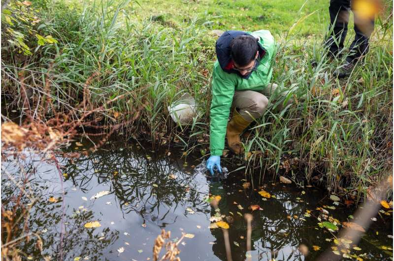 Banned pesticides in Europe's rivers