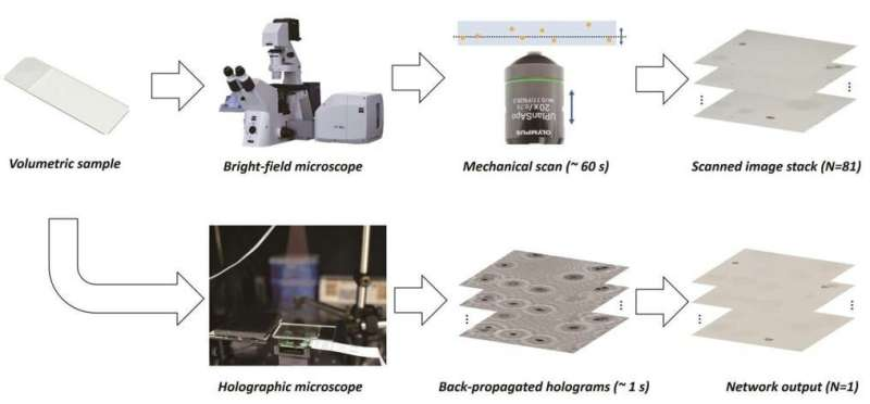 Best of both worlds: deep learning merges advantages of holography and bright-field microscopy for 3D imaging
