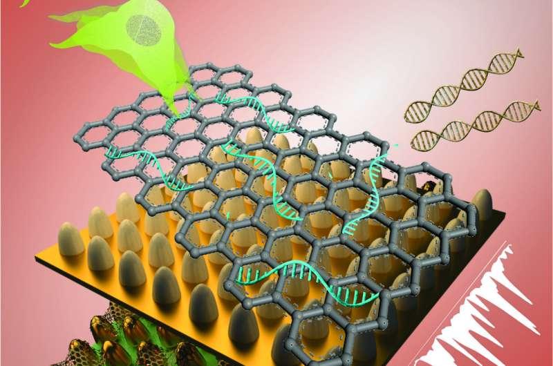 Better biosensor technology created for stem cells