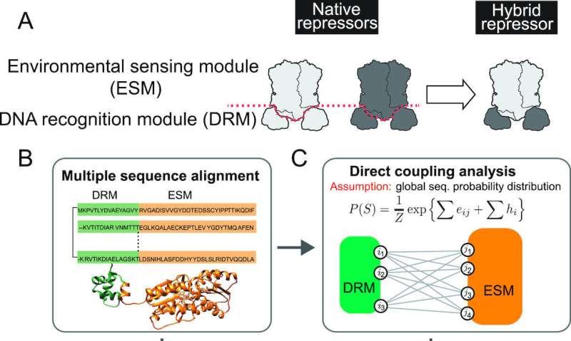 Biologists design a plug-and-play controller for gene expression