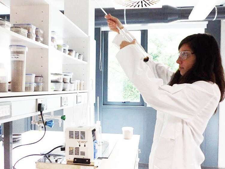 Biomass analysis: the key to success for your biorefinery process