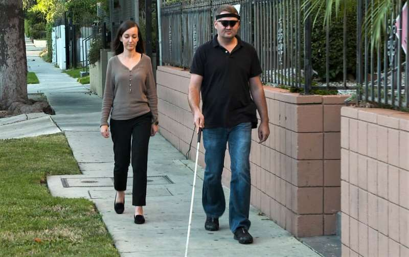 Brain implant restores visual perception to the blind
