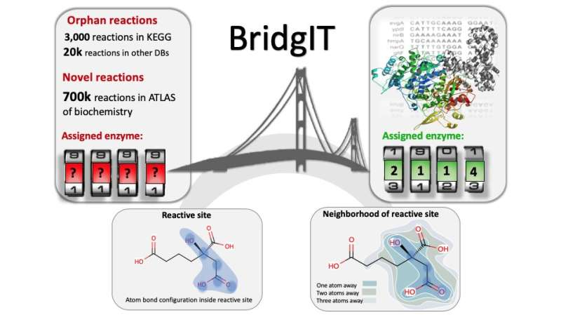 BridgIT, a new tool for orphan and novel enzyme reactions