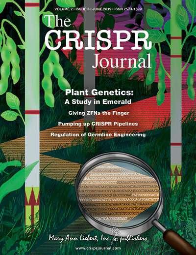 Broad Institute researchers use novel field-ready CRISPR platform to detect plant genes