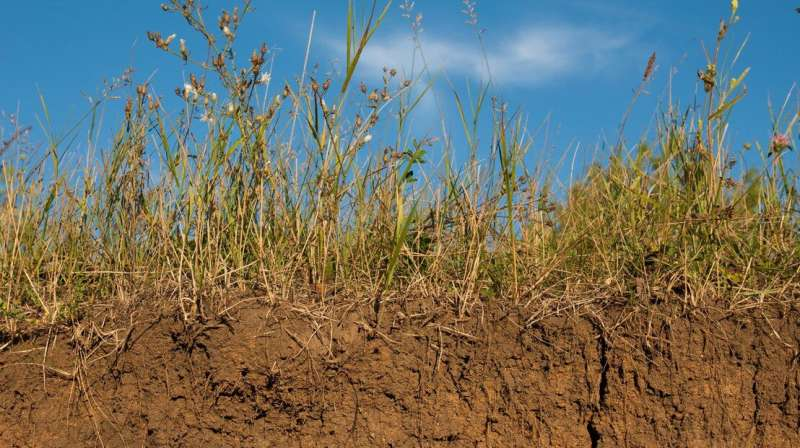 Building on our knowledge of the Earth's soils