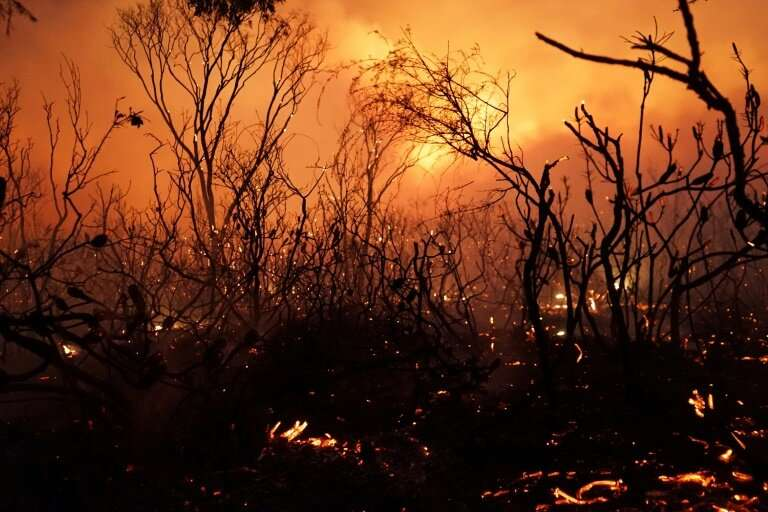 Bushfires are common in Australia's arid southeast but spread far into the tropical northeast in January as climate change conti
