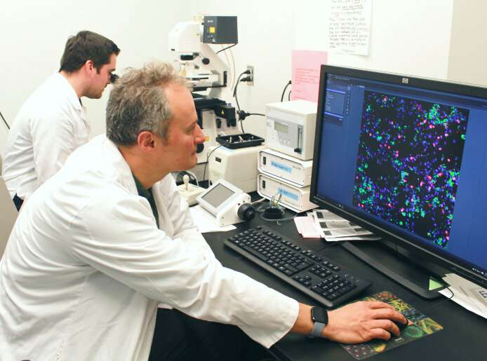Canadian researchers on promising path towards developing flu treatment using lipid target