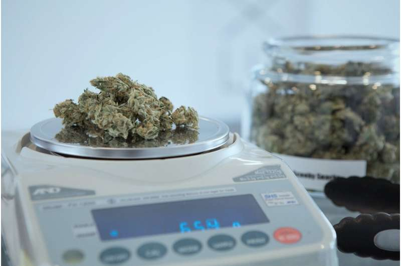 Cannabis helps those with spinal cord injuries escape pain