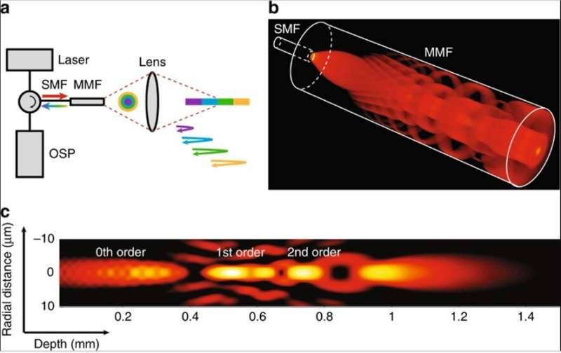 Cardiac imaging with 3-D cellular resolution using few-mode interferometry to diagnose coronary artery disease