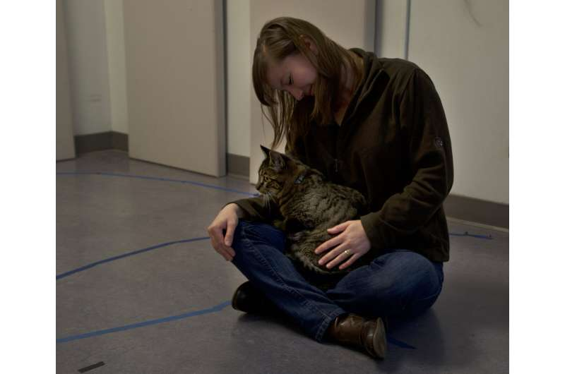 Cats are securely bonded to their people, too