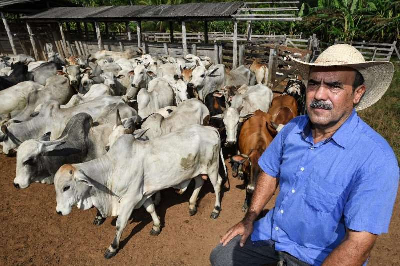 Cattle breeder Luiz Medeiros dos Santos admits he made some mistakes in how he cleared his ranch, errors that hurt the environme