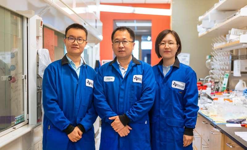 Chemists close gap in making nanomedicines safer, more efficient