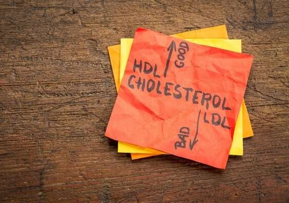 Cholesterol protein discovery raises hope for smarter drugs
