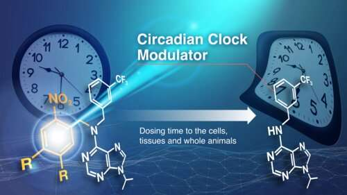 Compound controls biological clock with light